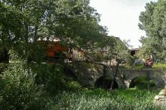 Saugbaggereinsatz am westlichen Teichufer