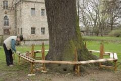 Errichten einer Baumbank
